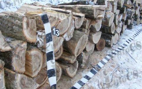 Furt lemn (3)