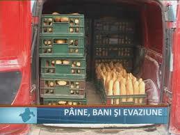 paine evaziune