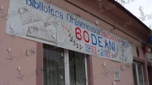Biblioteca Bocsa (22)