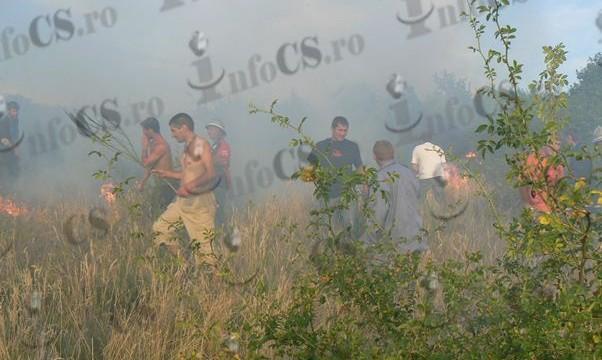 Foc Binis (10)