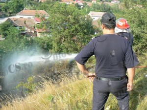 Foc Binis (5)