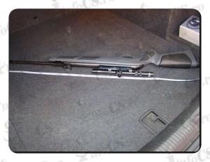 Arma aer (1)