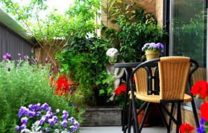 gradina-flori-balcon-mic