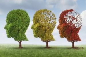 Alzheimer-336x226