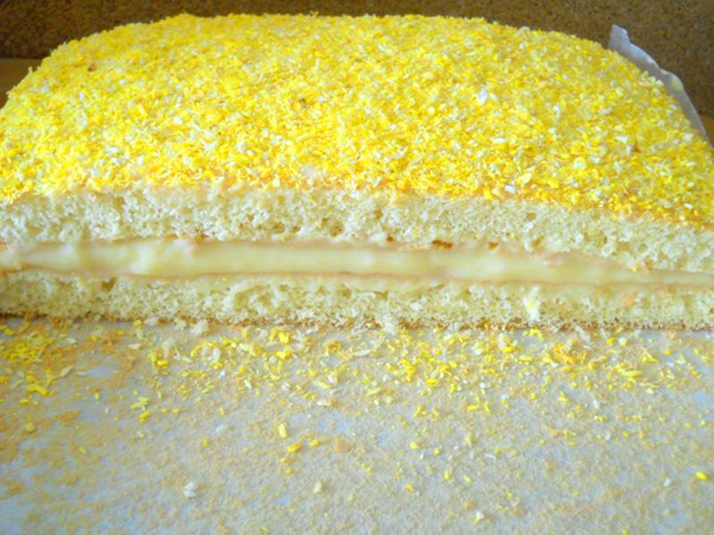 Tort lamaita