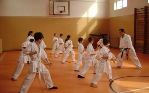 seminar-karate