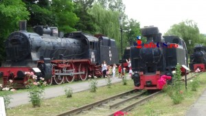 Muzeu locomotive (12)