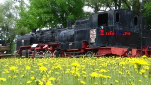 Muzeu locomotive (32)