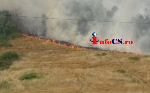 Foc Calnic (3)