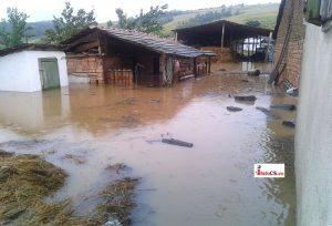 Inundatii Remetea 2016  (25)