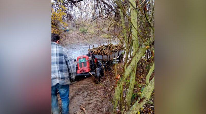 Acuzatii deosebit de grave din partea GEC Nera – Sârbii continuă și în acest an să fure arbori de pe malul românesc al Nerei . Cine sunt complicii din România? VIDEO