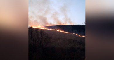 Au început incendiile de vegetaţie provocate de săteni în Banatul Montan VIDEO